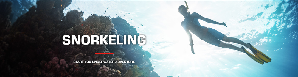 Start your snorkeling adventure with Pro Dive Central Coast