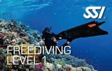 Picture for category Learn To Freedive