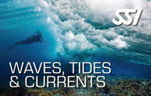 SSI Waves Tides and Currents Program