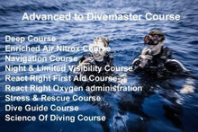 SSI Advanced to Divemaster Program