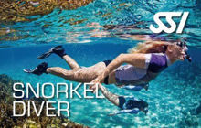 SSI Snorkeling Course