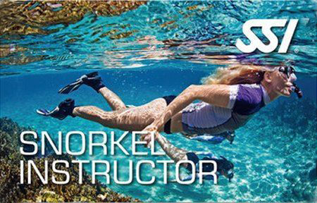 SSI Snorkeling Instructor, freediver, free dive instructor, sassy instructor, pro-dive, nsw central coast, prodive