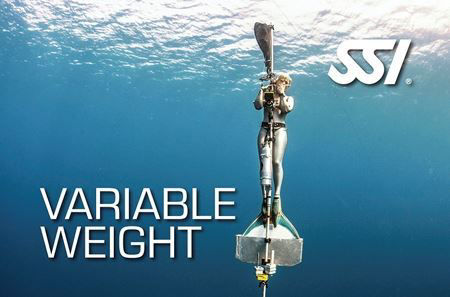 SSI Variable Weight (VWT)