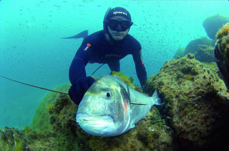 mares spearfishing